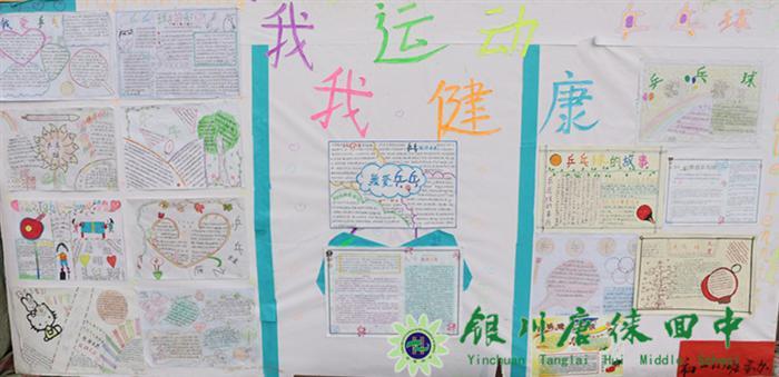风采无限——第33届运动会宝湖校区体育文化展板展示