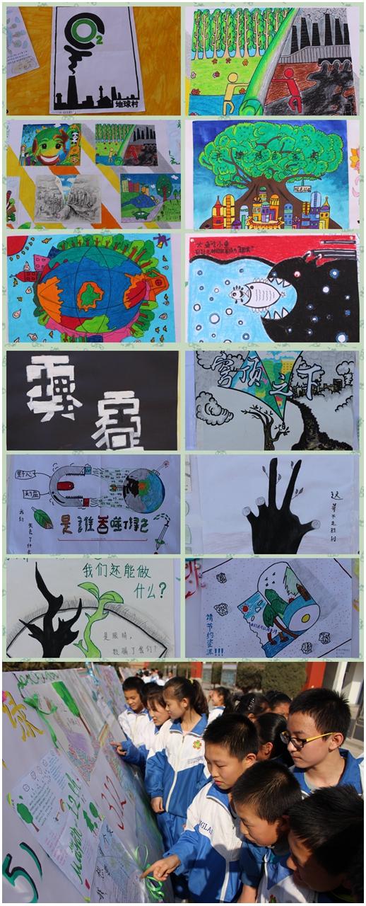 环保为主题的学生手绘海报创意展示活动,20个班级精心制作的展板整齐