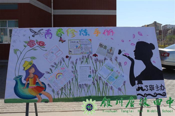 文化艺术节班级展板展示
